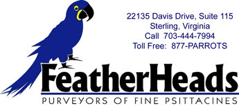 FeatherHeads - Logo - Bird Perches